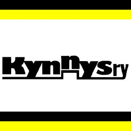 Read more about the article Kynnys ry:n uusi hallitus vuodelle 2019 on valittu